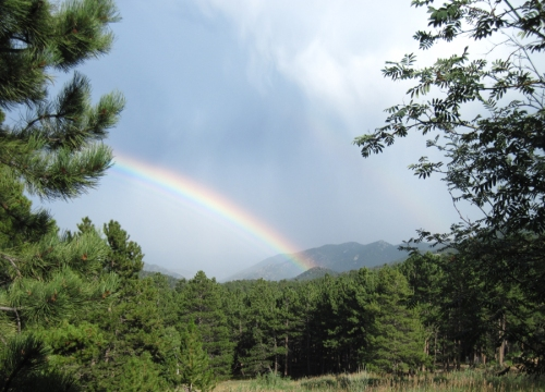 Rainbow08212013