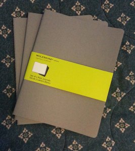 3 Moleskin Sketch books