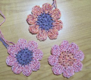 "My ""test"" flowers for color."