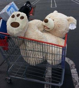 Bear in the Cart