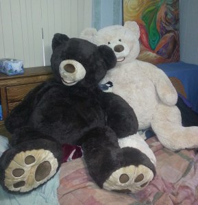 Bears in Bed