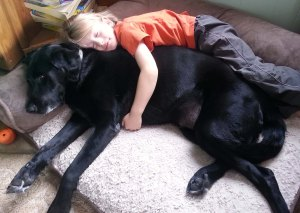 Tango and T2 cuddle