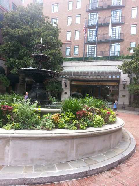 Beautiful fountain and garden