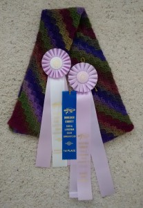 margie-cs-cty-fair-ribbons