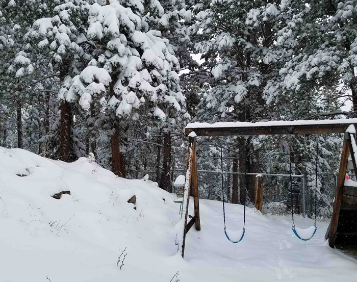 Snow loaded pine trees on a snowy hillside with swing set in foregrounds with snow on seats.